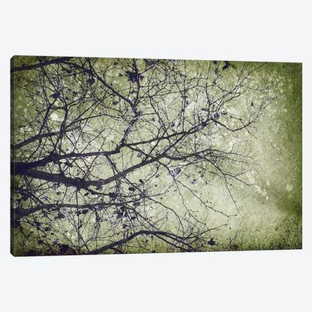 Collage E Canvas Print #PST176} by PI Studio Art Print