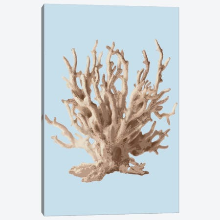 Coral II Canvas Print #PST189} by PI Studio Canvas Print