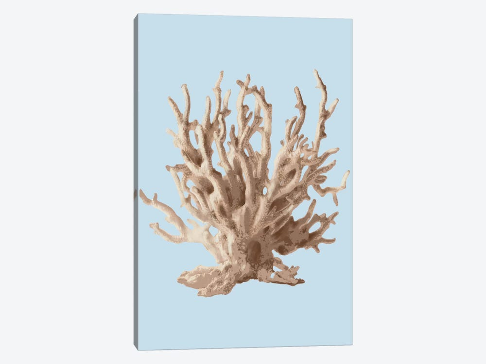 Coral II by PI Studio 1-piece Canvas Art