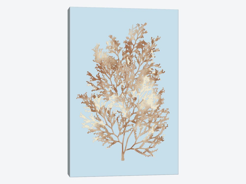 Coral III by PI Studio 1-piece Canvas Wall Art