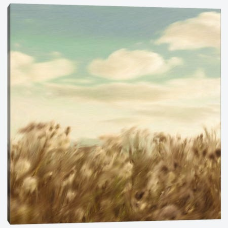 Dandelion Field Canvas Print #PST206} by PI Studio Art Print