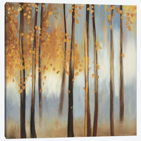 Days Of Gold Canvas Print #PST209} by PI Studio Canvas Artwork