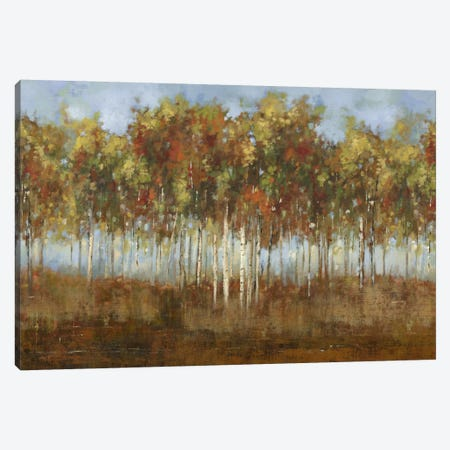 Dream Meadow II Canvas Print #PST220} by PI Studio Canvas Artwork