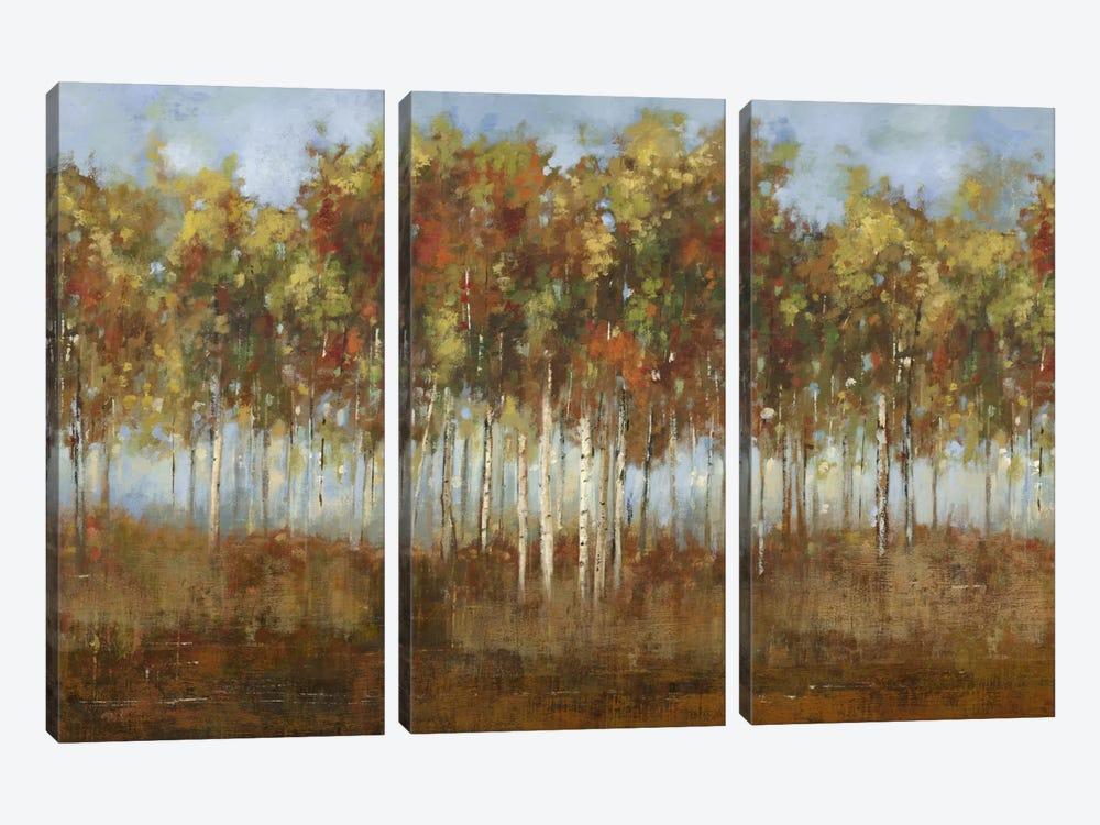 Dream Meadow II by PI Studio 3-piece Canvas Art Print