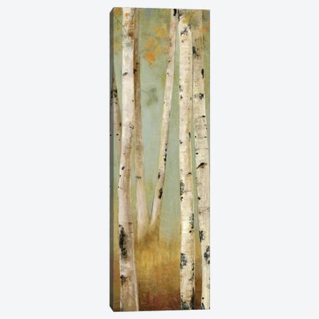 Eco Panel II Canvas Print #PST230} by PI Studio Art Print