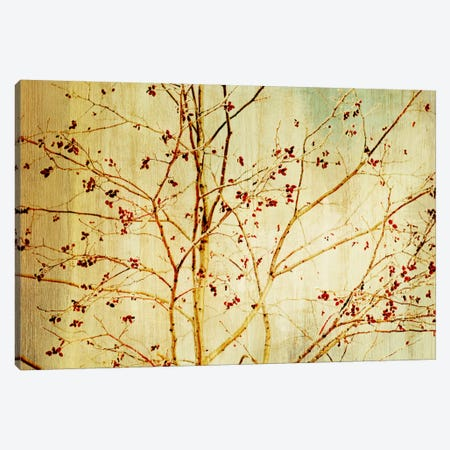 Etched Canvas Print #PST241} by PI Studio Canvas Artwork