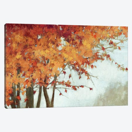 Fall Canopy I Canvas Print #PST243} by PI Studio Canvas Artwork
