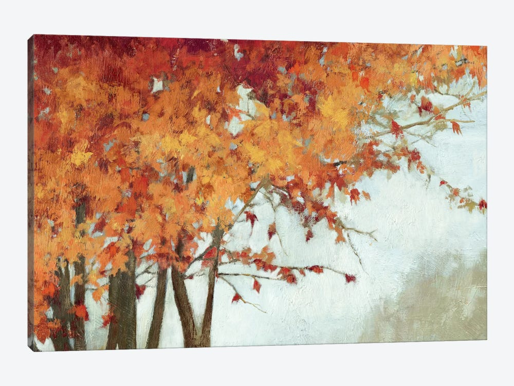 Fall Canopy I by PI Studio 1-piece Canvas Art