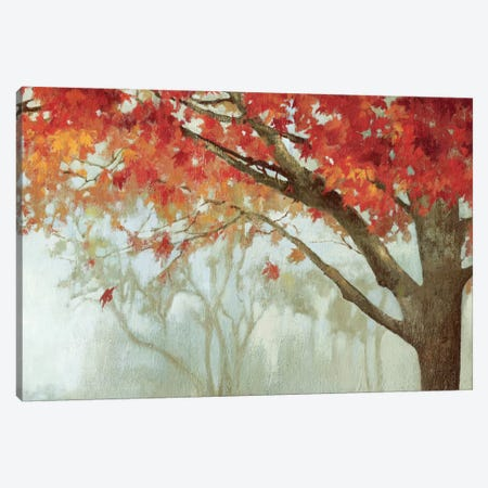 Fall Canopy II Canvas Print #PST244} by PI Studio Canvas Print