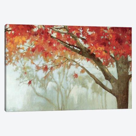 Fall Canopy II Canvas Print #PST244} by PI Studio Canvas Print