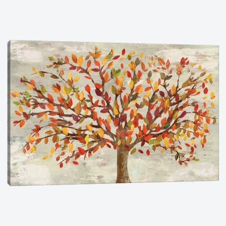 Fall Foliage Canvas Print #PST245} by PI Studio Art Print