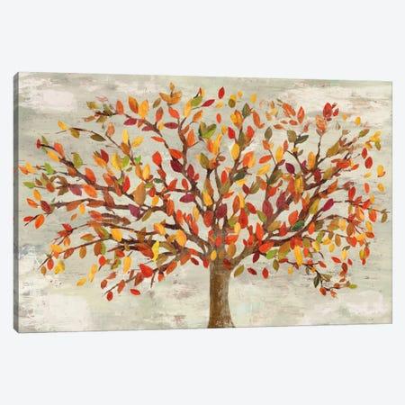 Fall Foliage Canvas Print #PST245} by PI Studio Art Print