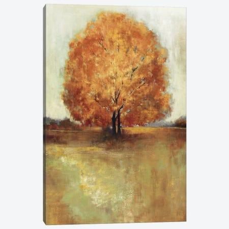 Field Of Dreams Panel Canvas Print #PST258} by PI Studio Canvas Art Print
