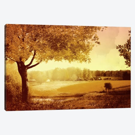 Golden Country Canvas Print #PST301} by PI Studio Art Print