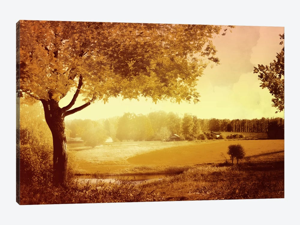 Golden Country by PI Studio 1-piece Art Print
