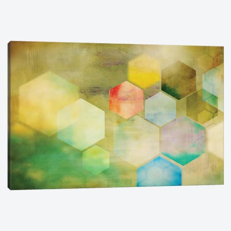 Honeycomb I Canvas Print #PST335} by PI Studio Art Print