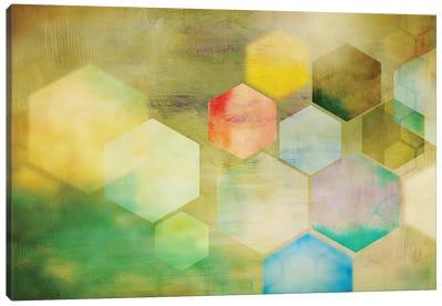 Honeycomb I Canvas Art Print