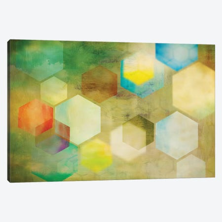 Honeycomb II Canvas Print #PST336} by PI Studio Canvas Print