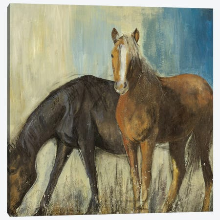 Horses II Canvas Print #PST340} by PI Studio Canvas Print