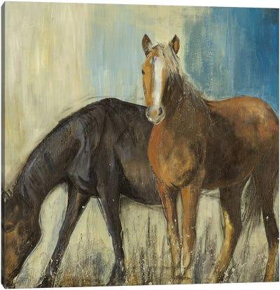 Horses II Canvas Art Print