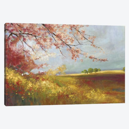 In The Field Canvas Print #PST358} by PI Studio Canvas Art
