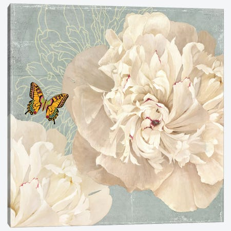Innocence Canvas Print #PST373} by PI Studio Canvas Wall Art