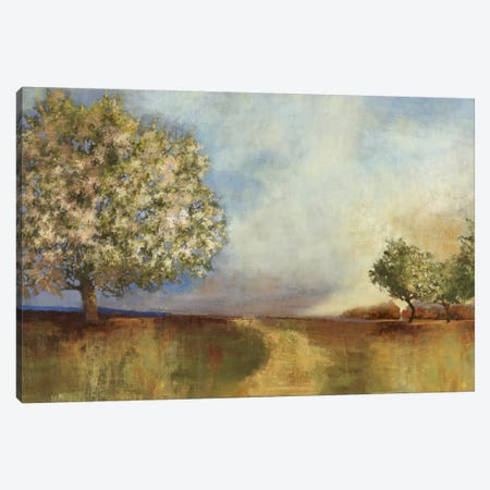 Apple Orchard Canvas Print #PST38} by PI Studio Canvas Art Print