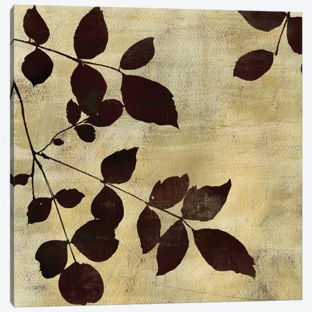 Leaf Study Canvas Print #PST395} by PI Studio Canvas Art Print