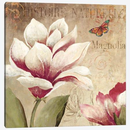 Magnolia Canvas Print #PST439} by PI Studio Art Print