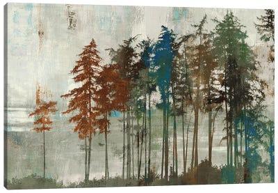 Aspen Canvas Art Print
