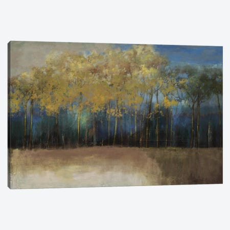 Night Comes Canvas Print #PST502} by PI Studio Canvas Print
