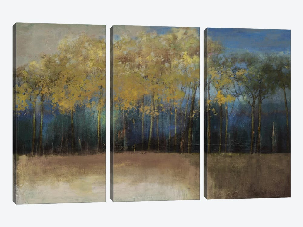 Night Comes by PI Studio 3-piece Canvas Wall Art