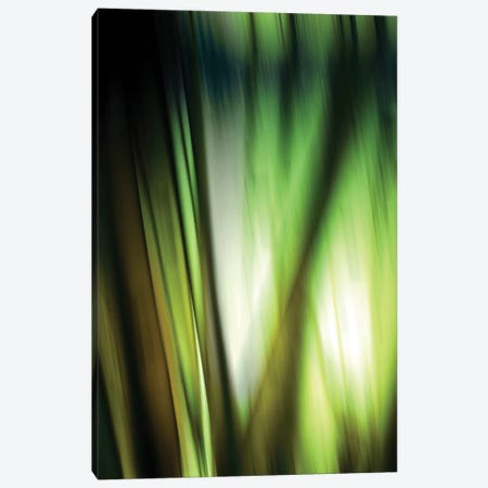 Organic I Canvas Print #PST529} by PI Studio Canvas Print