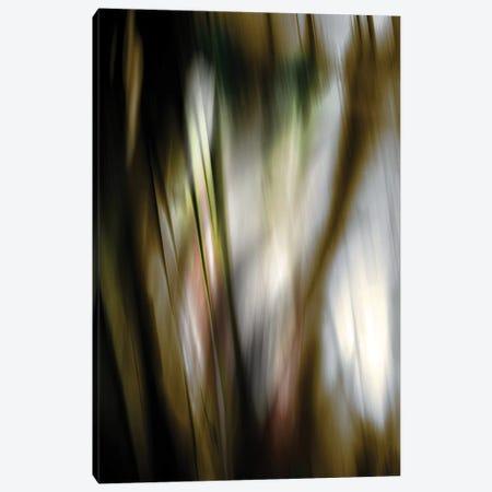 Organic III Canvas Print #PST531} by PI Studio Canvas Artwork