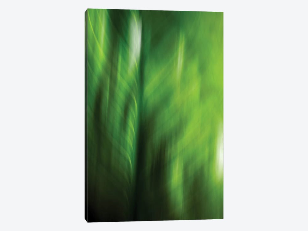 Organic V by PI Studio 1-piece Canvas Wall Art