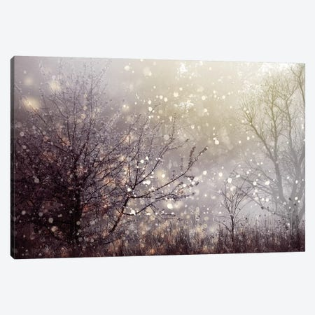 Atmospheric I Canvas Print #PST53} by PI Studio Art Print
