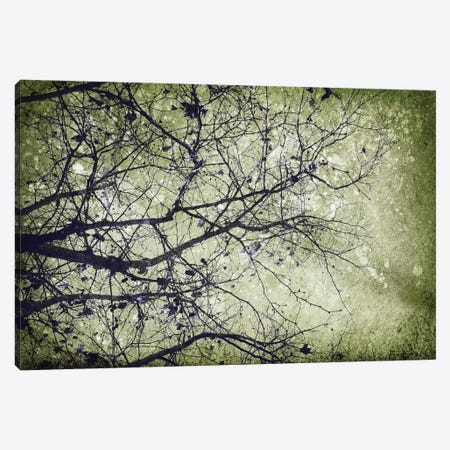 Atmospheric II Canvas Print #PST54} by PI Studio Canvas Art