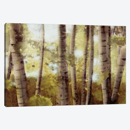 Palest Gold Canvas Print #PST556} by PI Studio Canvas Print