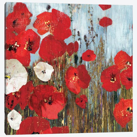 Passion Poppies I Canvas Print #PST564} by PI Studio Canvas Wall Art