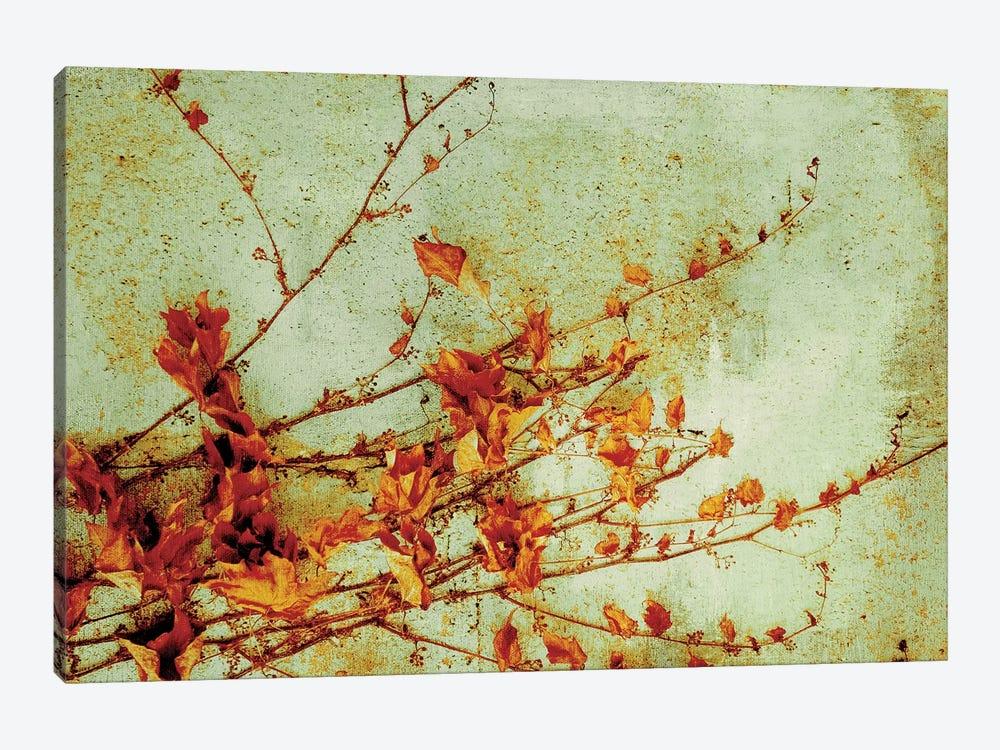 Persimmon by PI Studio 1-piece Canvas Print