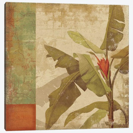 Planta Canvas Print #PST589} by PI Studio Art Print