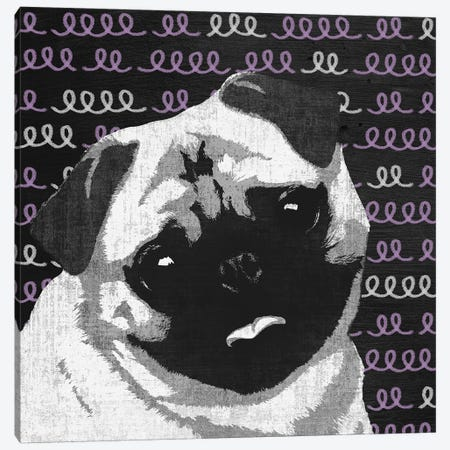 Pug Canvas Print #PST604} by PI Studio Canvas Art Print