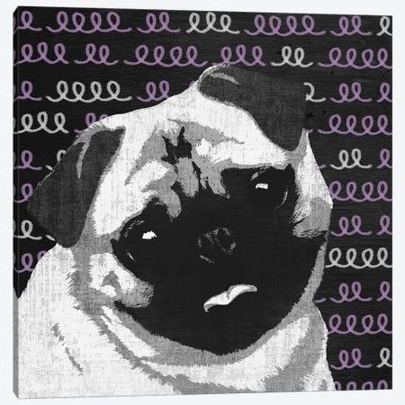 Pug Canvas Print #PST604} by PI Studio Canvas Art Print