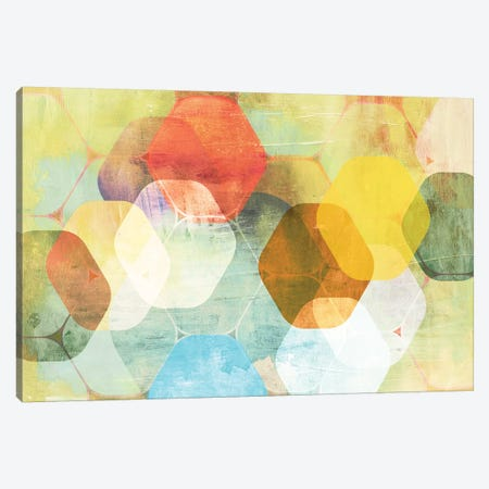 Rounded Hexagon II Canvas Print #PST646} by PI Studio Canvas Art Print