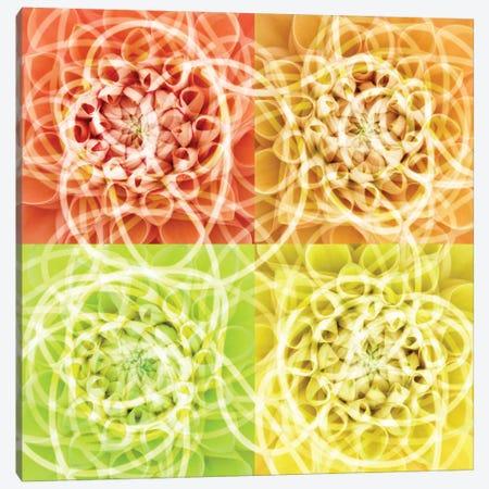 Scribbles Canvas Print #PST654} by PI Studio Canvas Artwork
