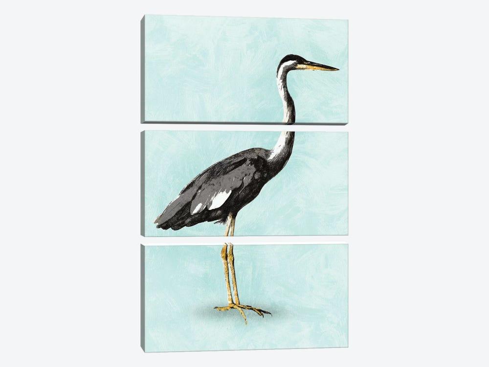 Seashore Bird I by PI Studio 3-piece Canvas Print