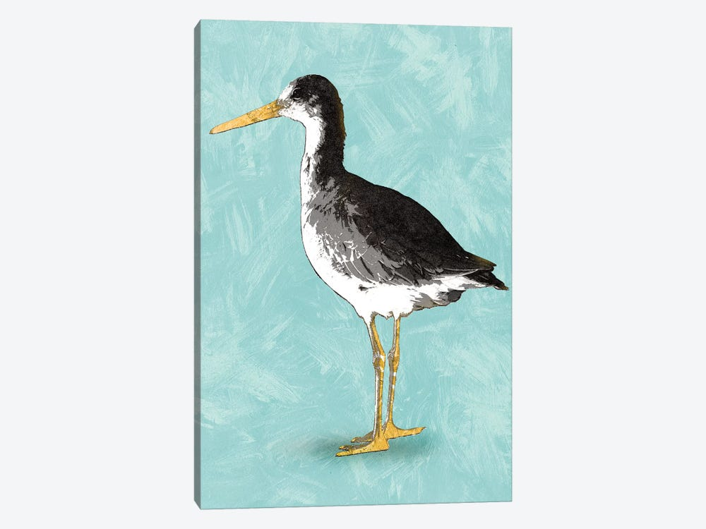 Seashore Bird III by PI Studio 1-piece Art Print