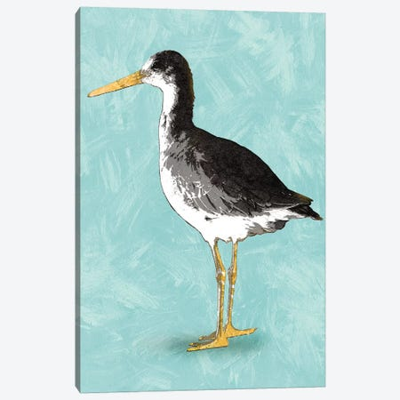 Seashore Bird III Canvas Print #PST658} by PI Studio Canvas Art Print