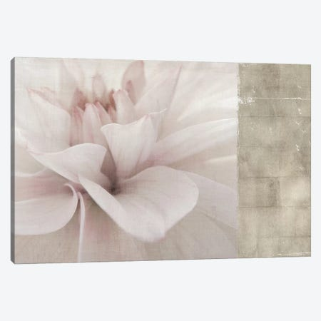 Softness Canvas Print #PST691} by PI Studio Canvas Art Print