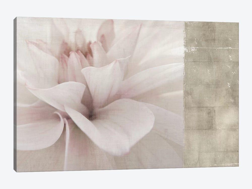 Softness by PI Studio 1-piece Canvas Artwork